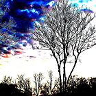 Tree I by Kirsten Day