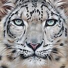 Faces of the wild - Snow Leopard by Elena Kolotusha