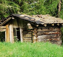 Derelict Wooden Mountain Shack by jojobob