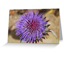 Giant Thistle Flower 4 Greeting Card