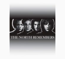The North Remembers by MrDave888