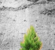 tree1.1 Sticker