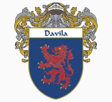 Davila Coat of Arms/Family Crest by William Martin