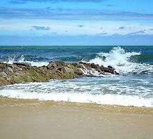 Pawleys Island Beach by Kathy Baccari