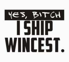 I ship Wincest by KarenWincest