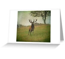 Charging Stag Greeting Card