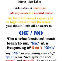 Advice to New Husbands by fennstars