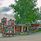 Nagley's Store in Talkeetna Alaska by Dyle Warren