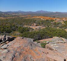 Op die dak van Namakwaland by Harrietza