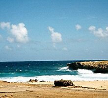 Aruba Carribean Island Beach Scene by Oldetimemercan