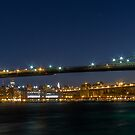 Brooklyn Bridge  3x1 by Andrew Dunwoody