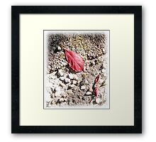 red 2 Framed Print