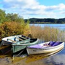 Boats On Loch Ard by Jim Wilson