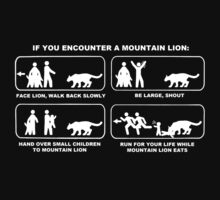 IF YOU ENCOUNTER A MOUNTAIN LION by Rob Price