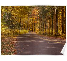 Country Road In Color Poster