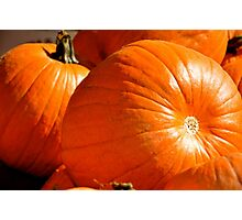 Fresh From the Pumpkin Patch! Photographic Print