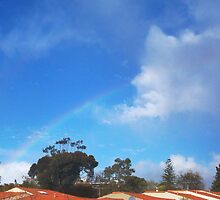 Spies Ain't Bored - Rainbow by Robert Phillips