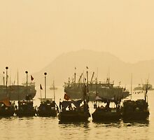 Cat Ba Harbour, Vietnam by Tim Topping