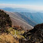 Beautiful Hotham by DavidsArt