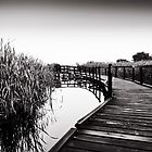 Herdsman Lake Boardwalk by dioptrewho