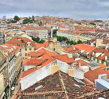 Lisbon from the roof by terezadelpilar~ art & architecture