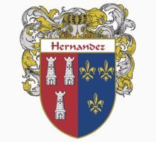 Hernandez Coat of Arms/Family Crest Kids Clothes