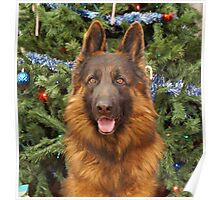 Hoss at Christmas Poster