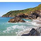 Lantic Bay, Cornwall by Andrew Roland