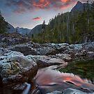 Liquid Fire by Thomas Dawson