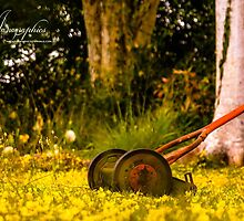 Old School Pushmower by Janagraphics