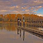 Autumn at the Pier by l5evans