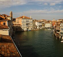 Venetian View of the Grand Canal by Georgia Mizuleva