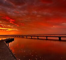 """Swan Bay Dawning"" by Phil Thomson IPA"