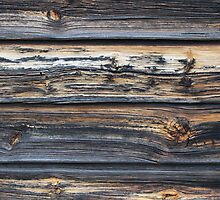 Old farm. Detail. Withered panel. by UpNorthPhoto