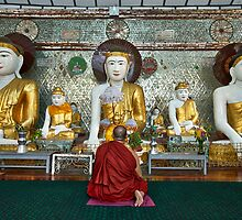 faithful Buddhist monk praying at Buddha Statues in SHWEDAGON PAGODA by travel4pictures