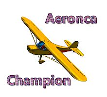 Aeronca Champion by boogeyman