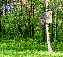Basketball Forest Court by Yevgeni Kacnelson