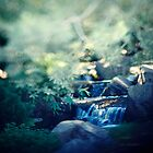 Small falls by zadverie