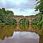 Prebends bridge by David  Parkin