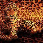 leopard print by Cliff Vestergaard