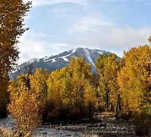 Baldy & the Big Wood River by KatherineLouise