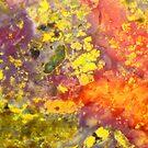 Rainbow Warzone (Kaleidoscope Jasper) by Stephanie Bateman-Graham