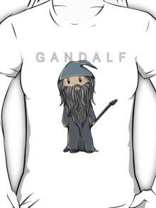 Gandalf   Ian McKellen [with text] T-Shirt