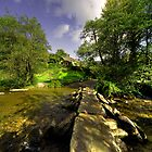 Tarr Steps in Autumn  by Rob Hawkins