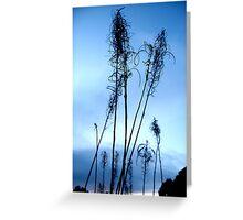 plants winter sky  Greeting Card