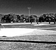 Baseball Field of Dreams by Alicia  Summerville