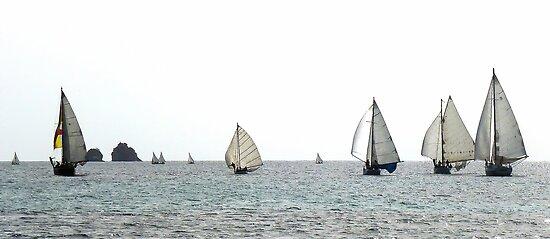 working boat regatta by globeboater