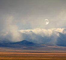 Moonrise  by Arla M. Ruggles