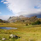 Blea Tarn by Mike Church
