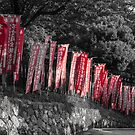 Red Flags by Colin  Ewington